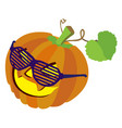 pumpkin with sunglasses and leafs isolated on vector image vector image