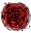 rose artistic color image a red vector image vector image
