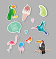 set of summer exotics birds vector image vector image