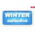 Winter Collection inscription vector image