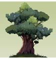 cartoon beautiful tree with green foliage vector image vector image