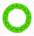 Green leaves wreath