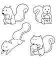 set of squirrel vector image