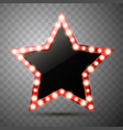 star with lights isolated vector image vector image
