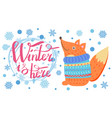 winter is here poster with fox vector image vector image