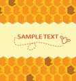 honey template vector image