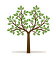 color shape of tree vector image vector image