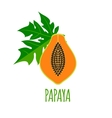 Half of papaya Icon in flat style vector image