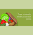 home vegetables banner horizontal cartoon style vector image vector image