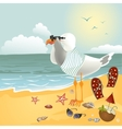 Seagull on the beach looking through binoculars vector image vector image