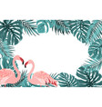 tropical border frame turquoise leaves flamingo vector image