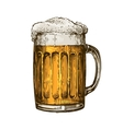 Beer in glass mug with foam Hand drawn vector image vector image