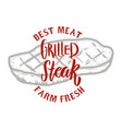 grilled steak farm fresh best meat grilled meat vector image