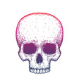 Human skull over white hand drawn vector image