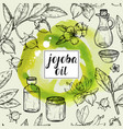 seamless watercolor pattern with jojoba oil vector image vector image