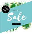 special offer sale up to 50 off leaves blue backg vector image vector image