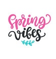 spring vibes modern calligraphy quote vector image vector image