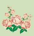 tea roses in cartoon style vector image