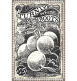Vintage Greengrocer - Turnip Advertising vector image