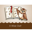 Wise owl and science book vector image