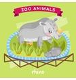 Zoo Animal Rhino vector image vector image