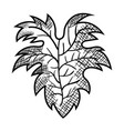 best wine leaf icon vector image
