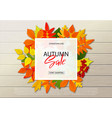 autumn sale poster with fall leaves on wooden vector image