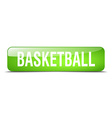 basketball green square 3d realistic isolated web vector image vector image