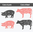 Beef Pig vector image vector image
