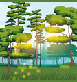 colorful background of forest landscape in the vector image vector image