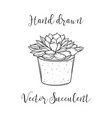 cute hand drawn succulent in a concrete flower pot vector image vector image