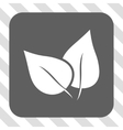 Flora Plant Rounded Square Button vector image