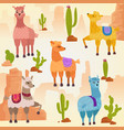 set of cute alpaca lama vector image