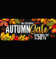 advertising banner about autumn sale at end vector image vector image