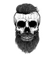 bearded skull design element for poster emblem t vector image vector image