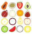 Fresh Fruits Icon Collection vector image vector image