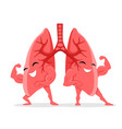 healthy and strong lungs vector image