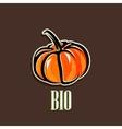 vintage with a pumpkin vector image vector image