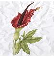 vintage flower - Serpentaria vector image