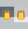 empty round honey glass jar with gold screw cap vector image