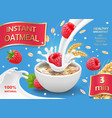 instant oatmeals oat flakes with raspberry vector image vector image