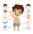 preschool educational banner with young boy vector image