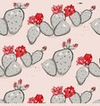 cactus bloom red pink summer pattern hand-drawn vector image vector image