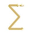 money sum invoice gold chain icon vector image vector image