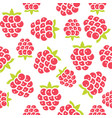 raspberry seamless pattern for wallpaper or vector image vector image