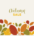 square banner template decorated fallen leaves vector image