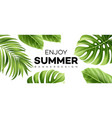 summer sale banner with tropical plant vector image vector image