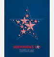 july fourth star vector image