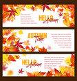 autumn foliage fall falling leaves banners vector image vector image