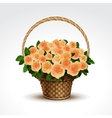 basket yellow roses isolated vector image vector image